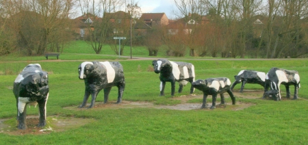 concrete-cows