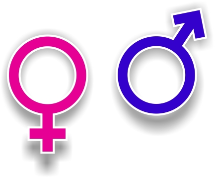 gender-symbols-1161576